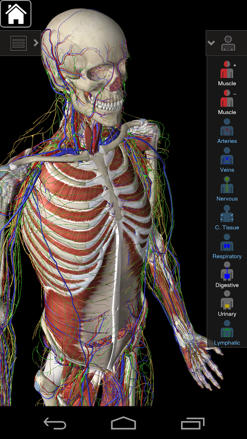 Awesome Apps--Essential Anatomy ~ Free Android Apps And Games