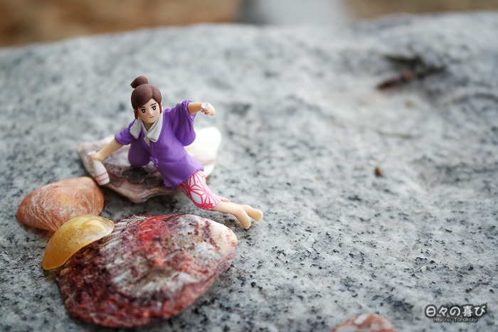 Fuchiko parmi les coquillages sur une plage