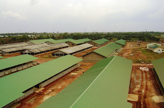 pictures of ojemai farm