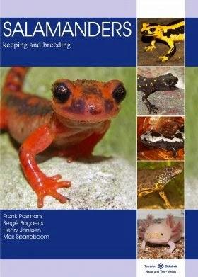 http://www.unzooencasa.com/2014/12/salamanders-keeping-and-breeding.html