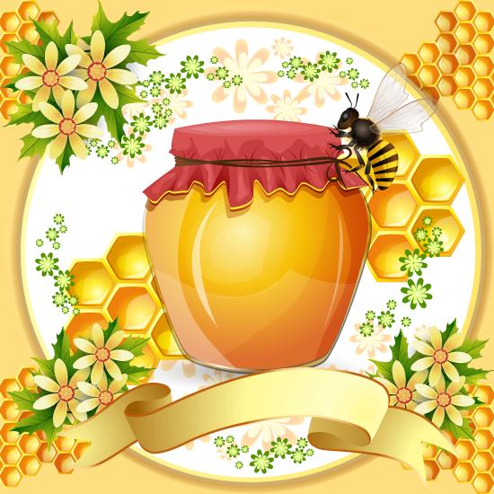 Marco de panal de abejas y miel