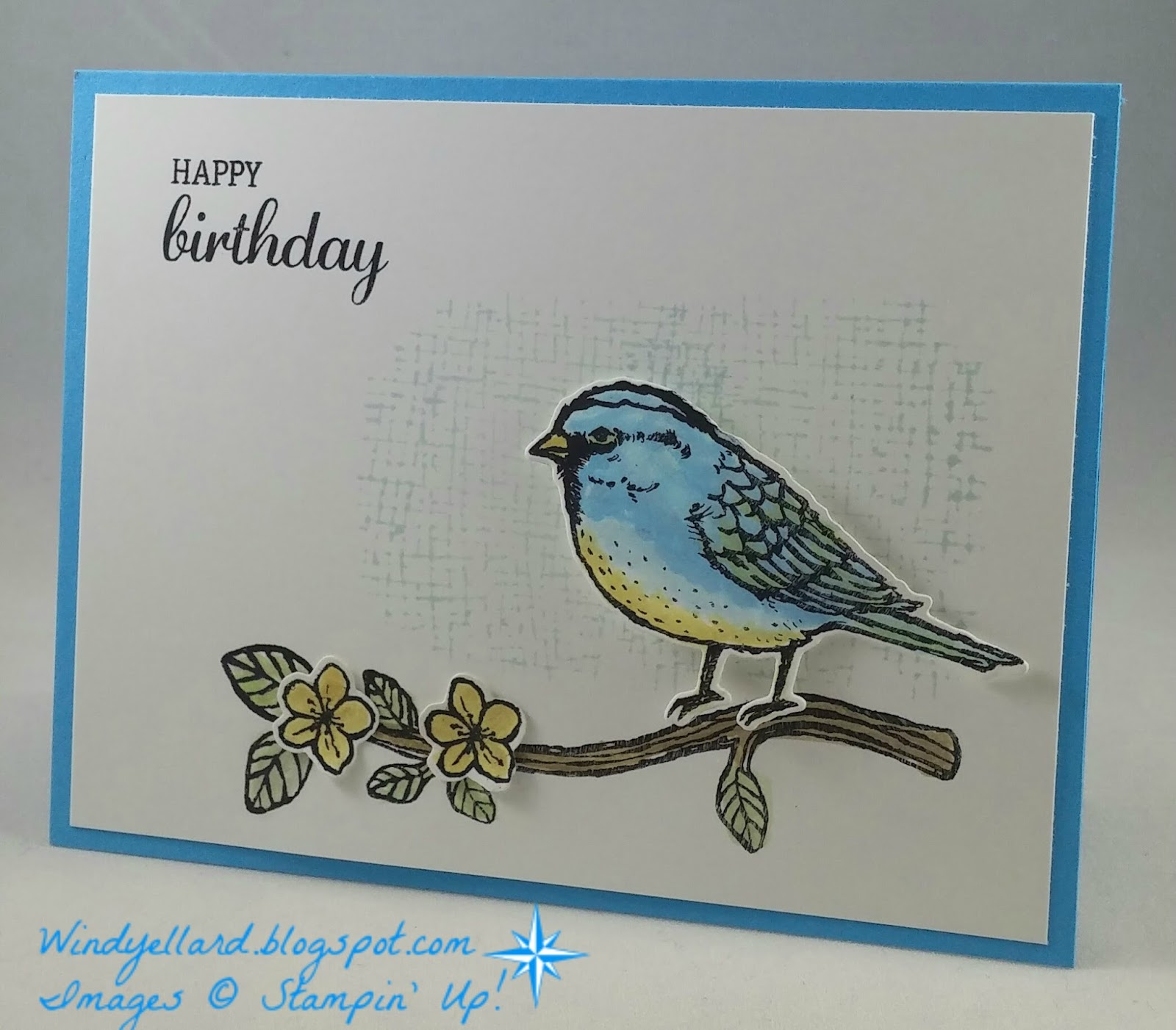 Windys Wonderful Creations Happy Birthday Sweet Blue Bird