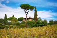 http://fineartfotografie.blogspot.de/2016/11/autumnal-impression-tuscany-italy.html
