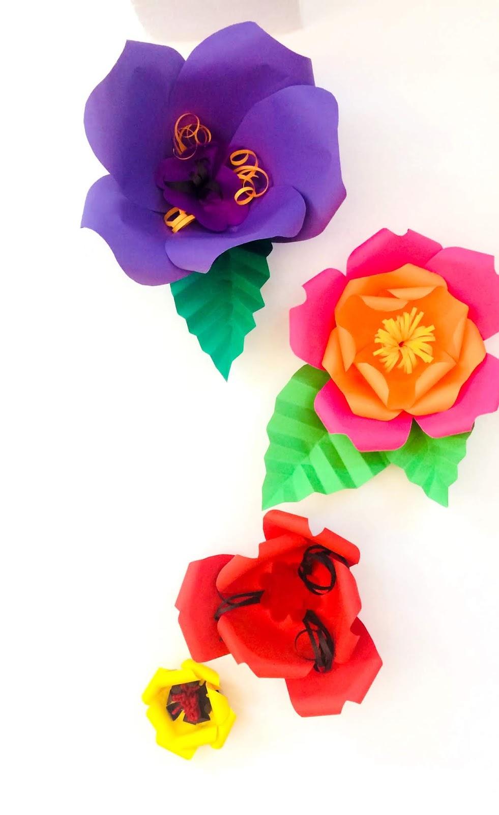 Flori mari pentru decor