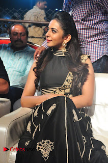 Actress Rakul Preet Singh at Sarrainodu Success Celebrations 0004