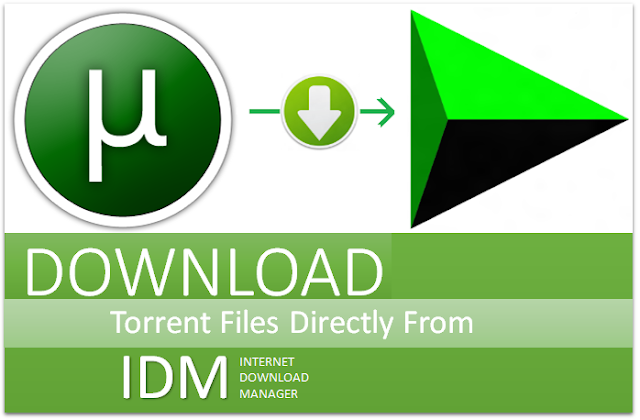 5 Ways To Download Torrent Files With IDM