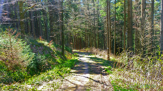 Erzgebirge Trail