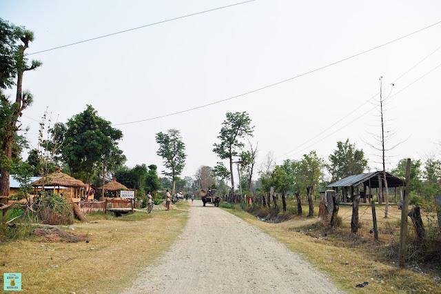 Alrededores Parque Nacional de Bardia, Nepal