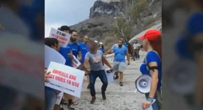 Σαντορίνη: Πλάκωσαν στο ξύλο φιλόζωους στην καλντέρα για τα γαϊδουράκια (βίντεο)