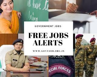 Free Job Alerts, Government Job Notification , Recruitment , Jobs, Employment News,Bank Jobs, Railway Jobs, Defense Jobs,Sarakari Naukari