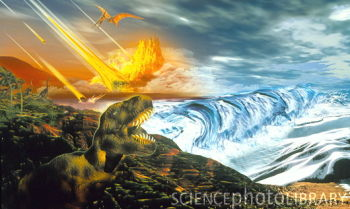Amazing Cultures THEORIES ABOUT THE EXTINCTION OF THE