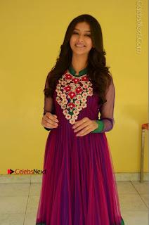 Actress Pooja Jhaveri Latest Stills in Purple Salwar Kameezt at Dwaraka Success Meet  0043.JPG