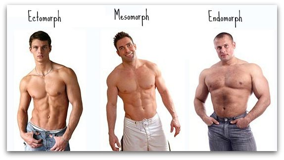 endomorph bodybuilder - photo #16