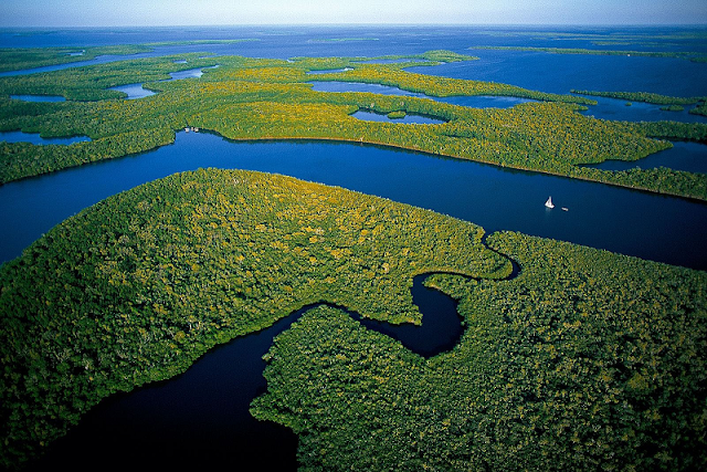Everglades National Park em Miami