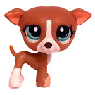 Littlest Pet Shop Dioramas Greyhound (#1585) Pet