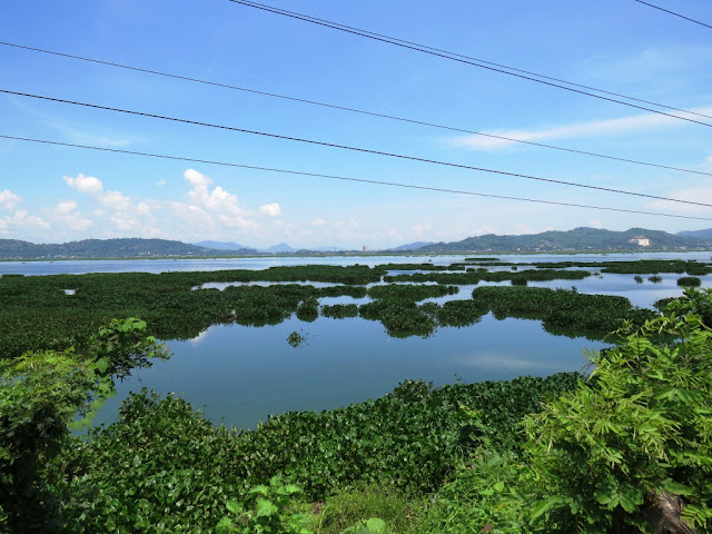 Lake outside Guwahati