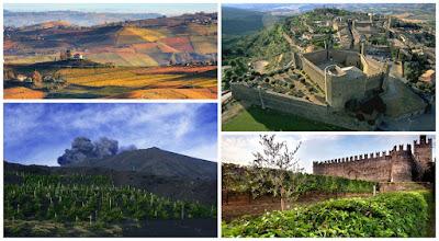 vino langhe montalcino etna franciacorta