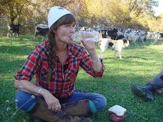 Albania, riitta reissaa, ratsastusmatka, Horsexplore