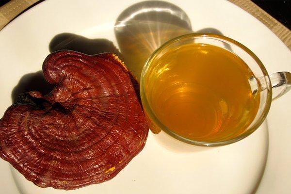 Kết hợp nấm linh chi với thảo dược