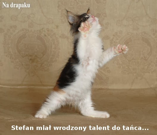 Talent do tańca