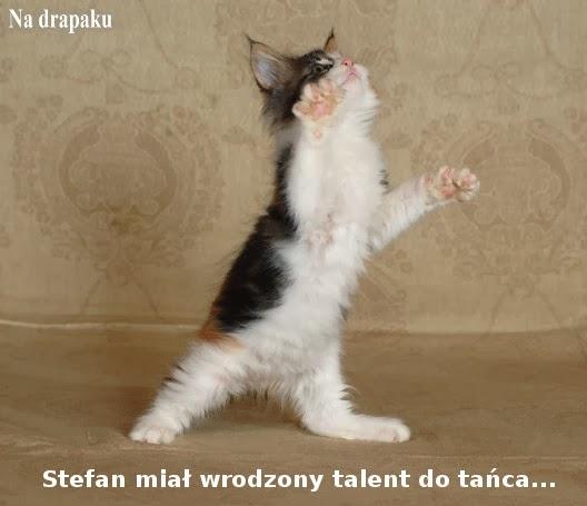 Talent do tańca