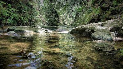Jernihnya air Kedung Pengilon di Kasihan Bantul Jogja