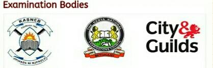Examination bodies