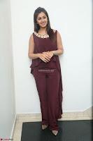 Nikki Galrani in a Brown Shining Sleeveless Gown at Nakshatram music launch ~  Exclusive 034.JPG