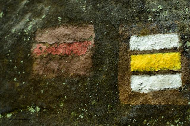 Ślady po dawnym oznakowaniu szlaków w labiryncie