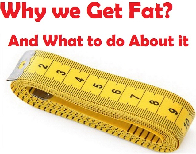 Why do we Get Fat?