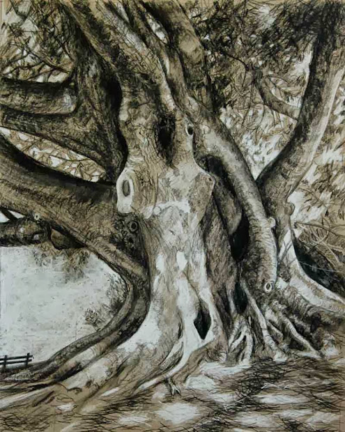 Bauer Bower Drawings Trees And Fantasy
