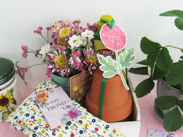 diy, mother's day, gift basket, canasta de regalo, dia de las madres, sangria, spa, beauty gift, gardening, plants, gifts