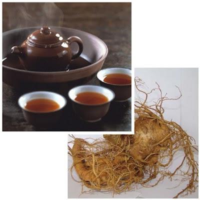 Pha trà sâm Ngọc Linh uống hàng ngày