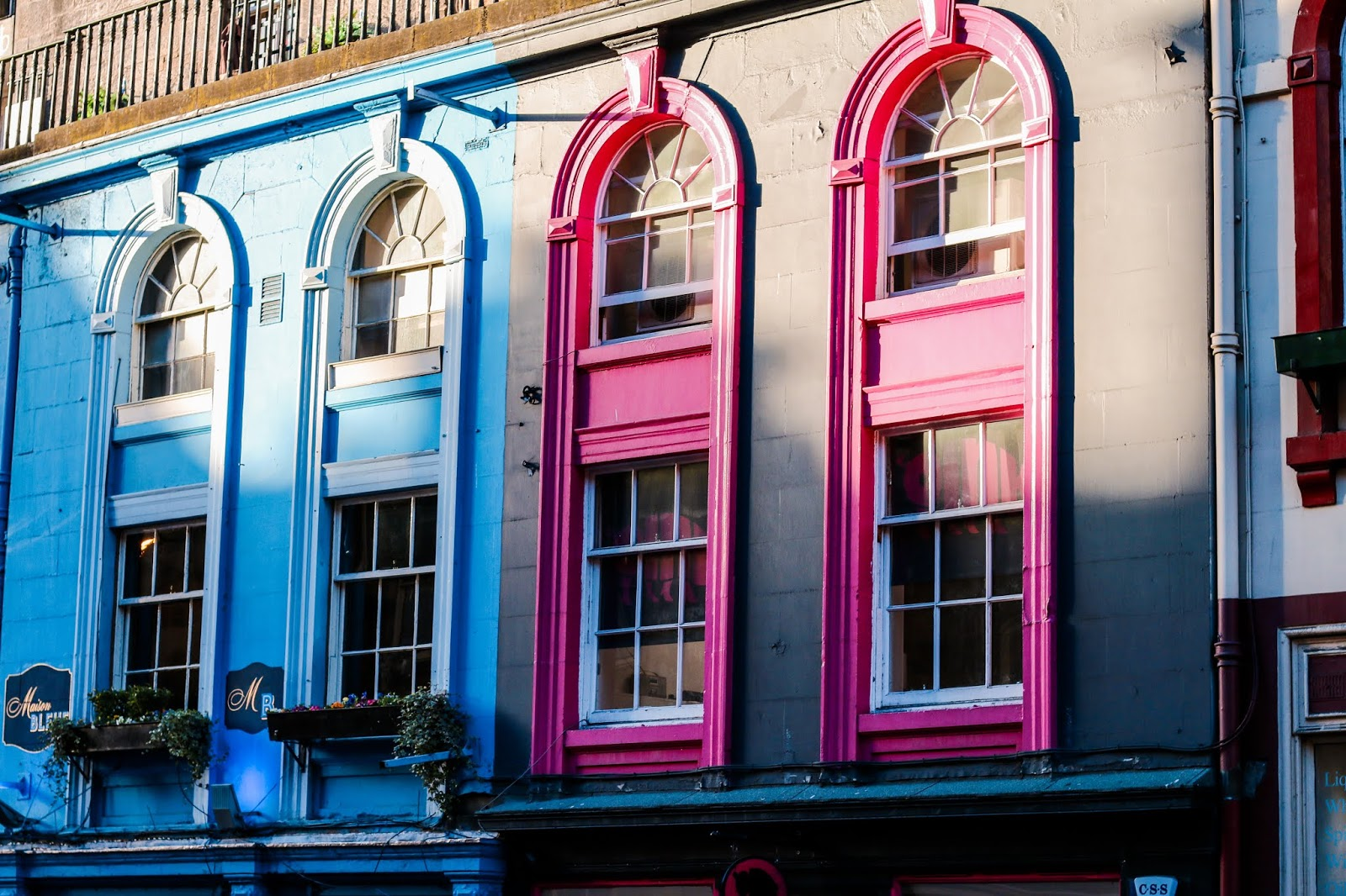 a close up of some windows in Edinburgh that are painted blue and pink