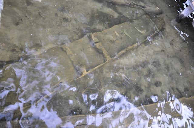 Dłubanka wczesnośredniowieczna z Jeziora Lednickiego