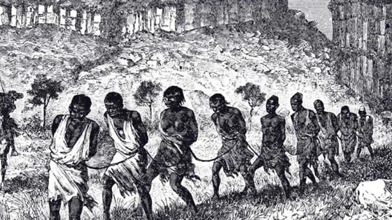 Image result for the slave trade