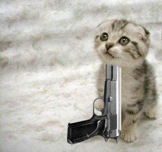 Funny Animals With Guns 2012 Most Funny Wallpapers Funny
