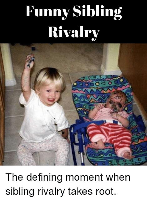 http://www.rosaforlife.com/2018/04/funny-sibling-rivalry.html