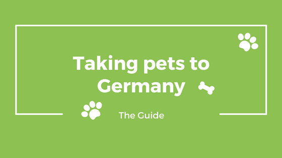 Taking pets to Germany