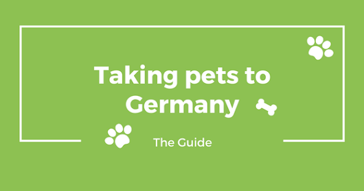 Taking Dogs or Cats to Germany