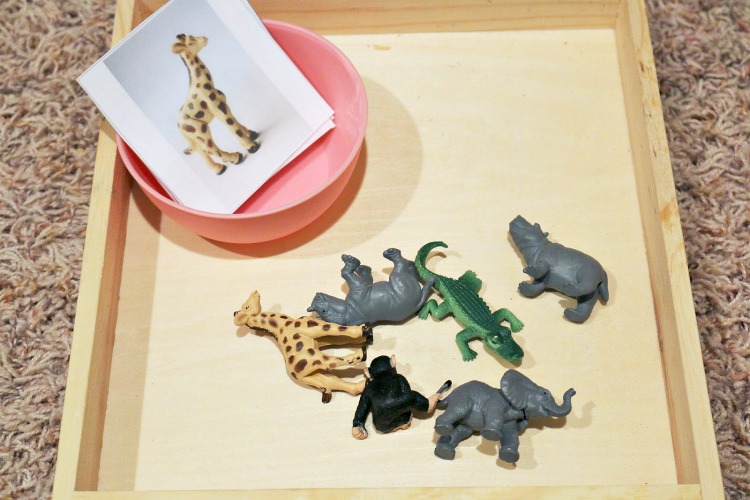 zoo animal matching toddler activity
