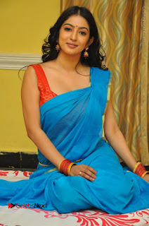 Telugu Actress Vaibhavi Stills in Blue Saree at Www.Meena Bazaar Movie Opening  0090.JPG