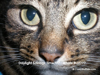 Daylight Savings Time???  Whatz That???