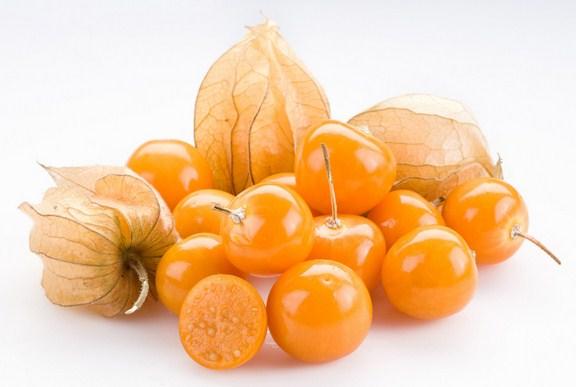 manfaat buah ciplukan untuk kesehatan
