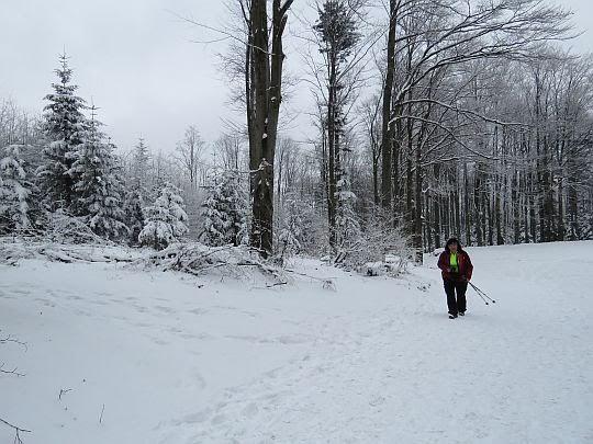 Droga do stacji narciarskiej.
