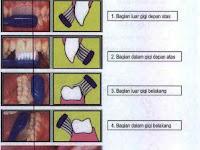 Ini Dia Langkah Menyikat Gigi yang Baik dan Benar