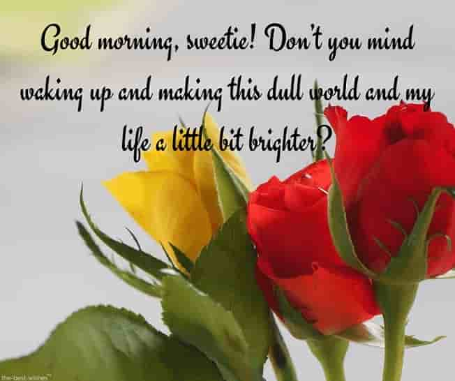 good morning text for her image with roses