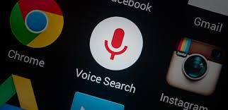 Seo search vocal