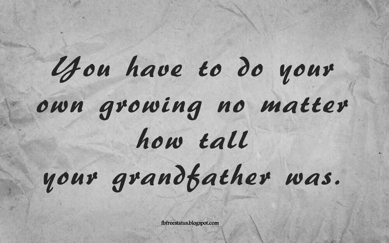 """You have to do your own growing no matter how tall your grandfather was."" -Quote from Abraham Lincoln"