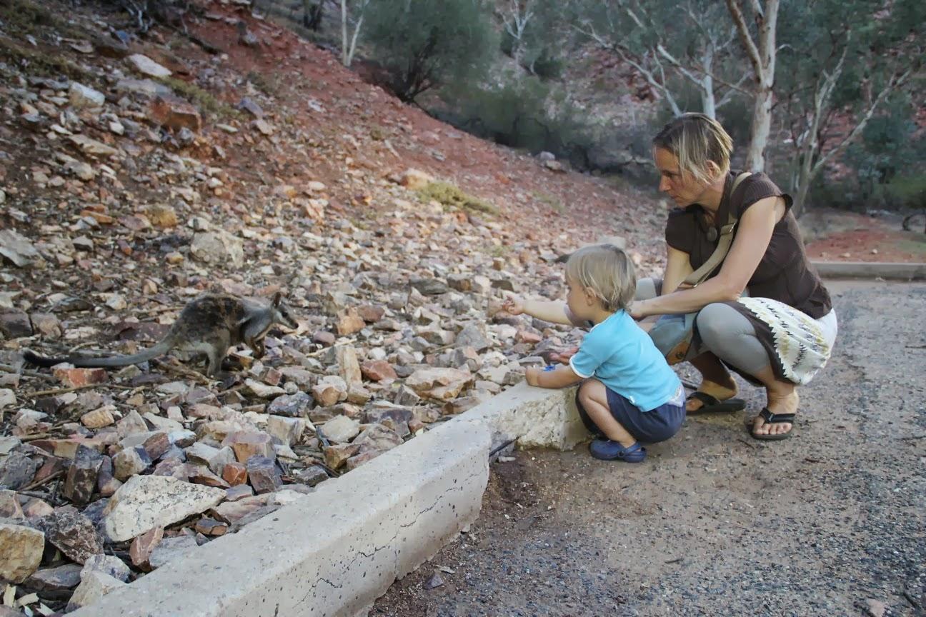 Flug der conchords aus australischen mädchen
